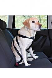 Bezpečnostní postroj pro psy do auta M