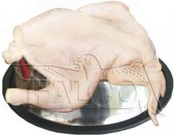 Mražené kuře 1kg - NOVINKA - SKLADEM NA PRODEJNĚ!